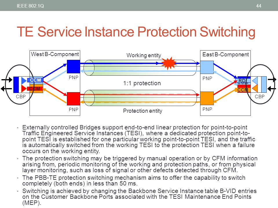 TE Service Instance Protection Switching