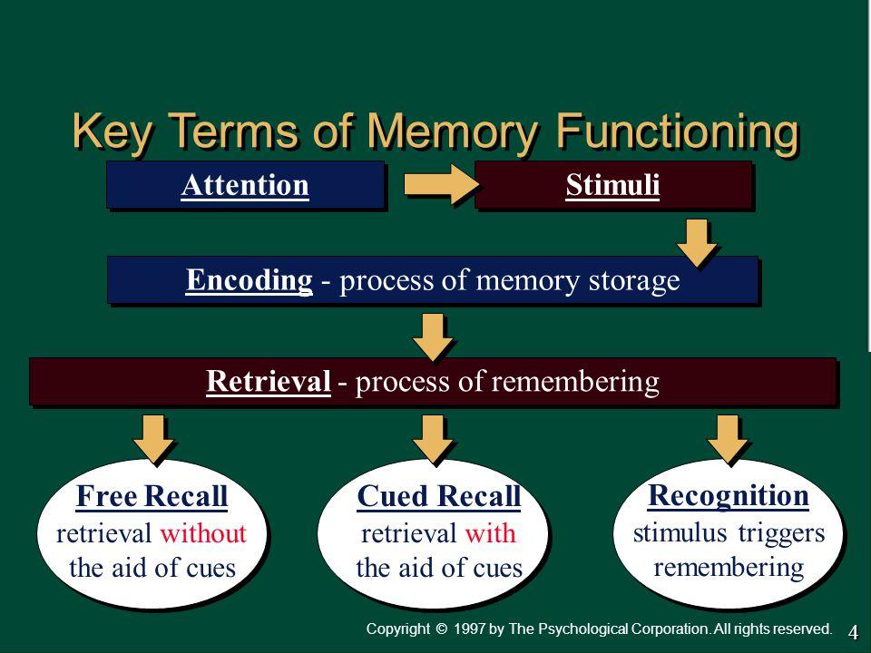 Key Terms of Memory Functioning