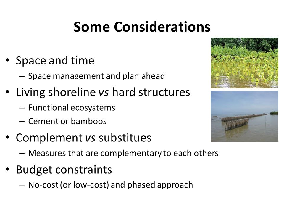 Some Considerations Space and time Living shoreline vs hard structures