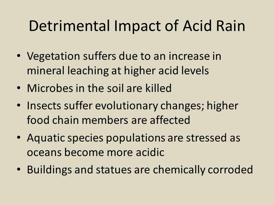Detrimental Impact of Acid Rain