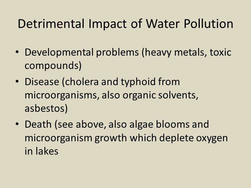 Detrimental Impact of Water Pollution