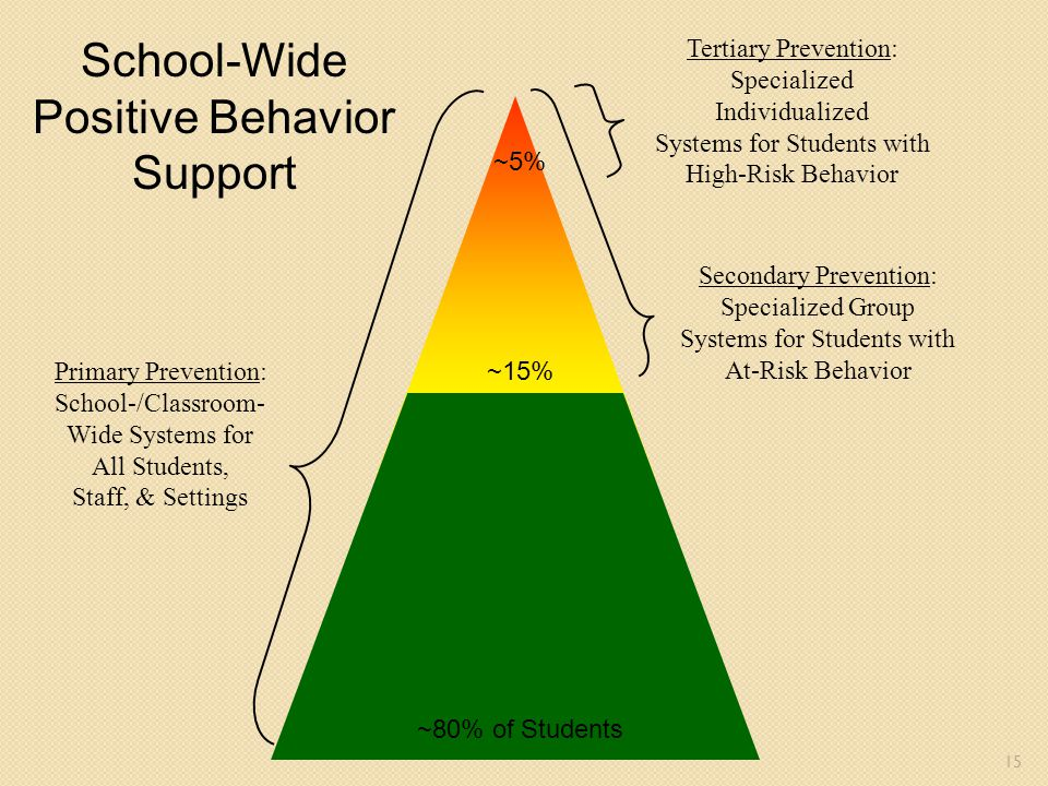 School-Wide Positive Behavior Support Tertiary Prevention: Specialized