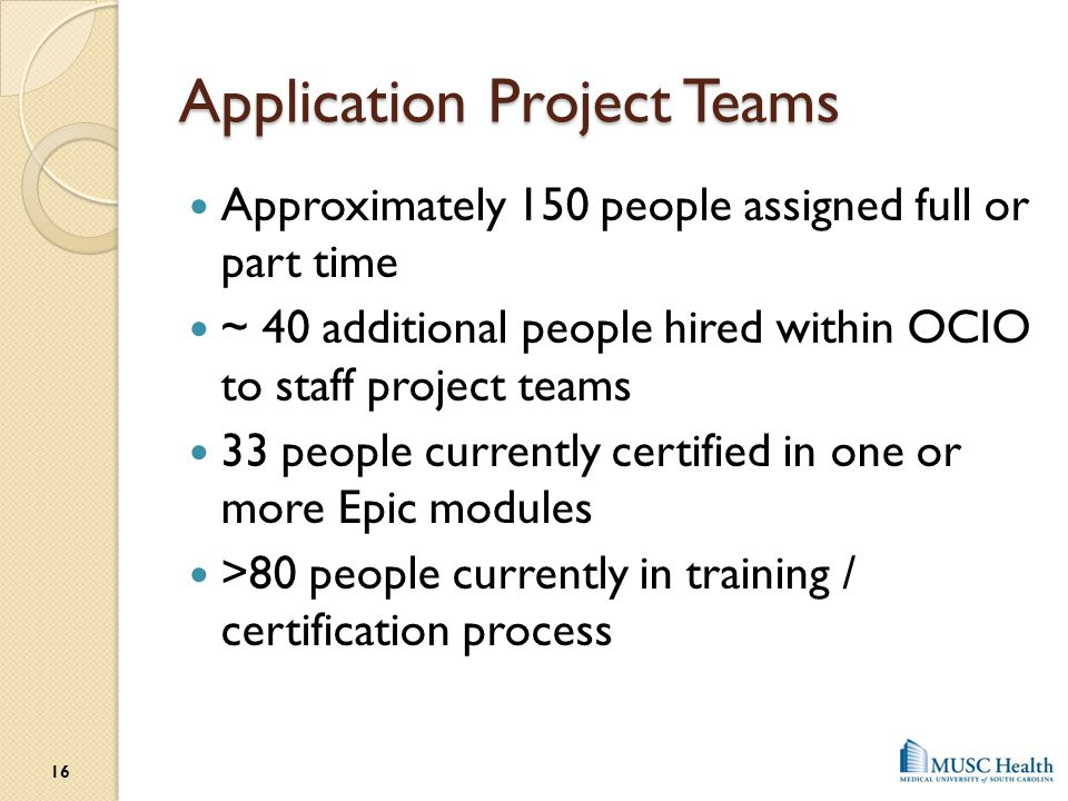 Application Project Teams