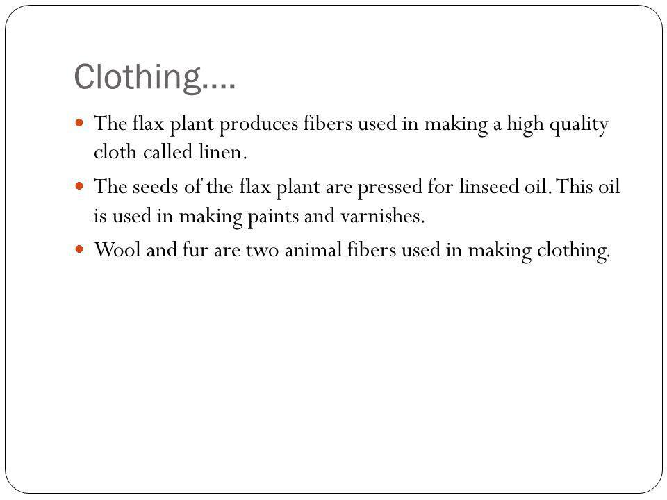Clothing…. The flax plant produces fibers used in making a high quality cloth called linen.