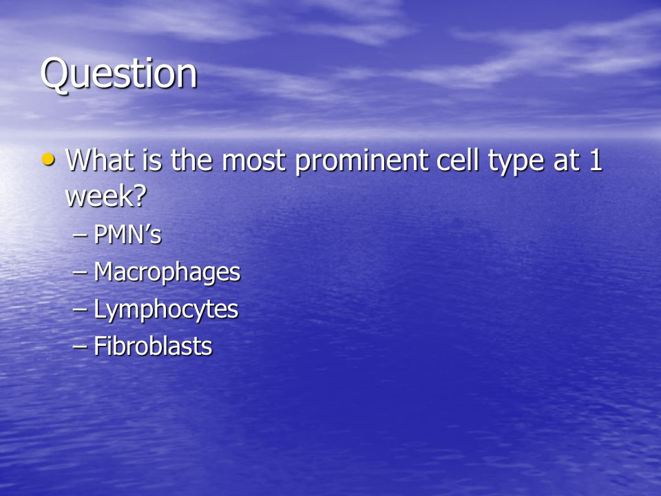 Question What is the most prominent cell type at 1 week PMN's