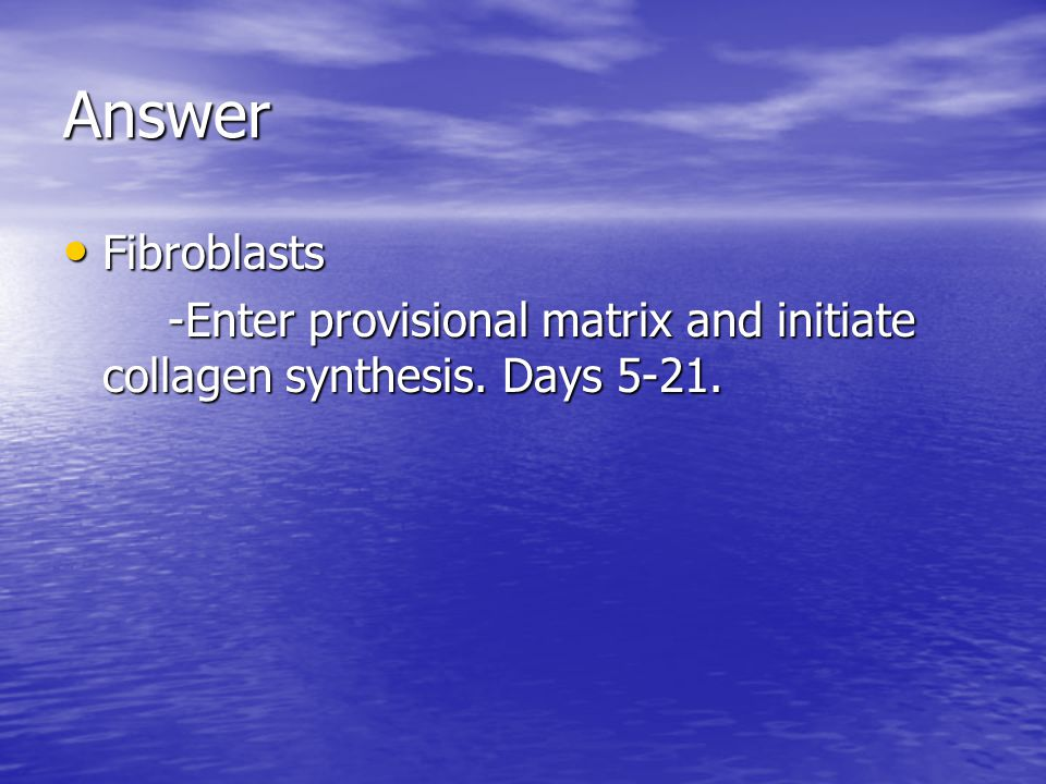 Answer Fibroblasts -Enter provisional matrix and initiate collagen synthesis. Days 5-21.