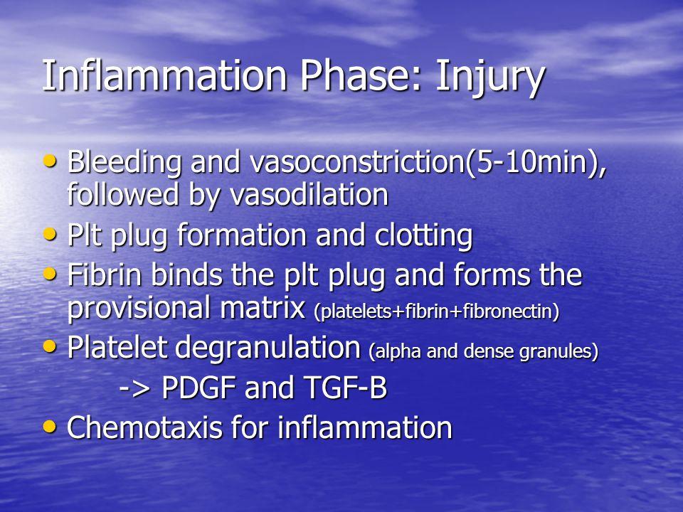 Inflammation Phase: Injury