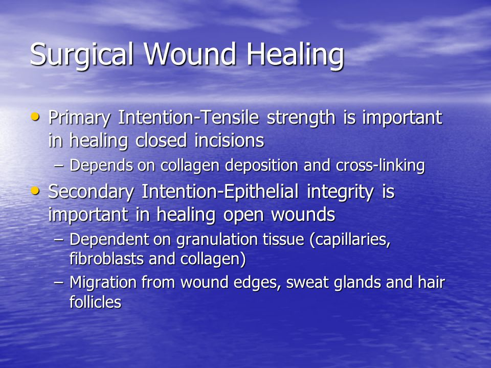 Surgical Wound Healing