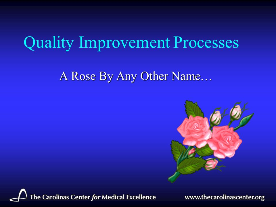 Quality Improvement Processes