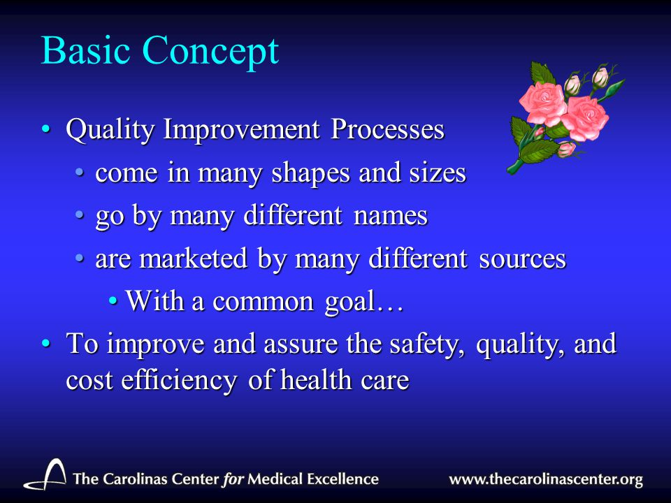 Basic Concept Quality Improvement Processes