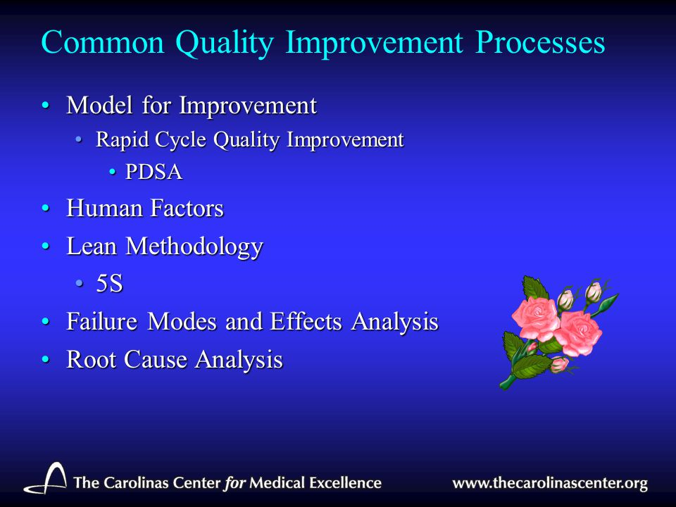Common Quality Improvement Processes