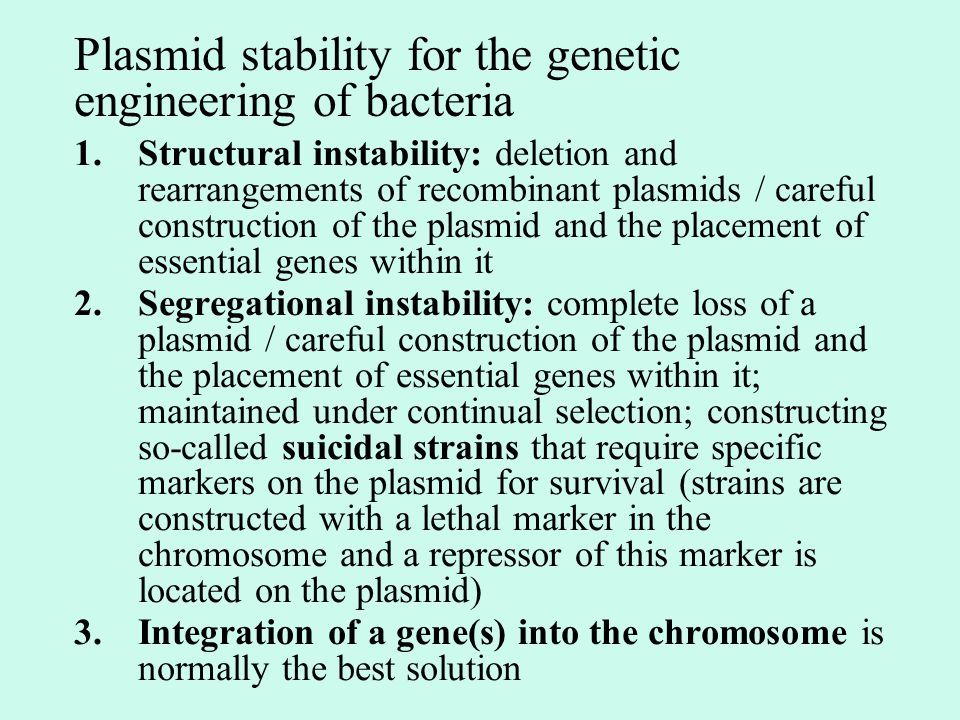 Plasmid stability for the genetic engineering of bacteria