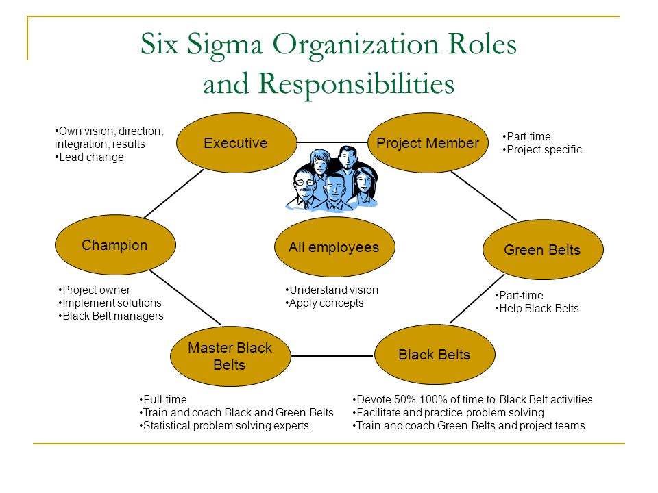 Six Sigma Organization Roles and Responsibilities