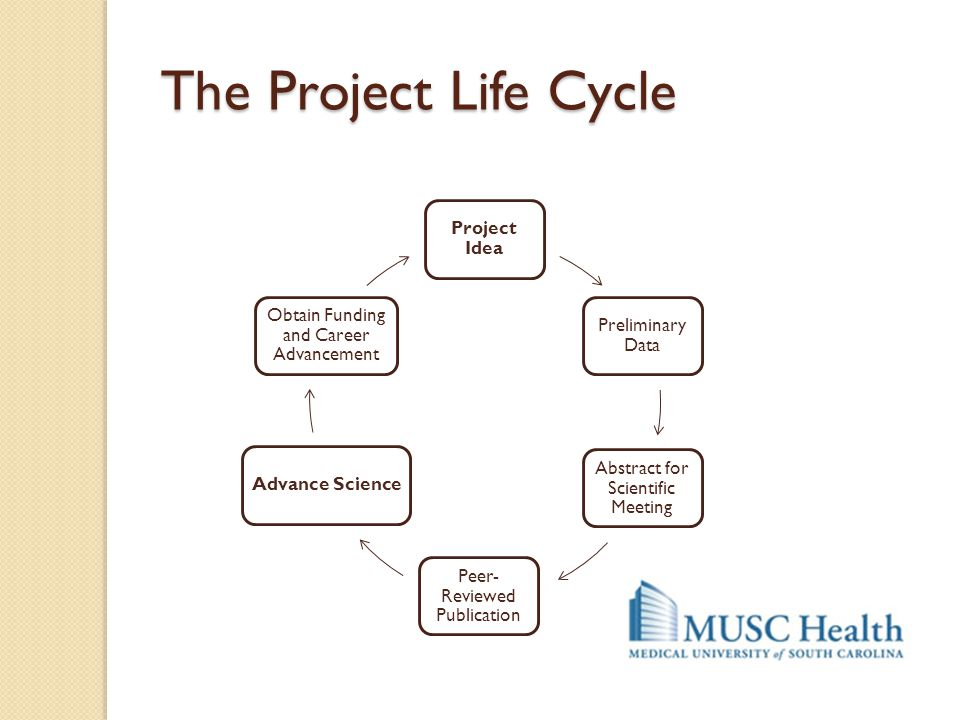 The Project Life Cycle Project Idea