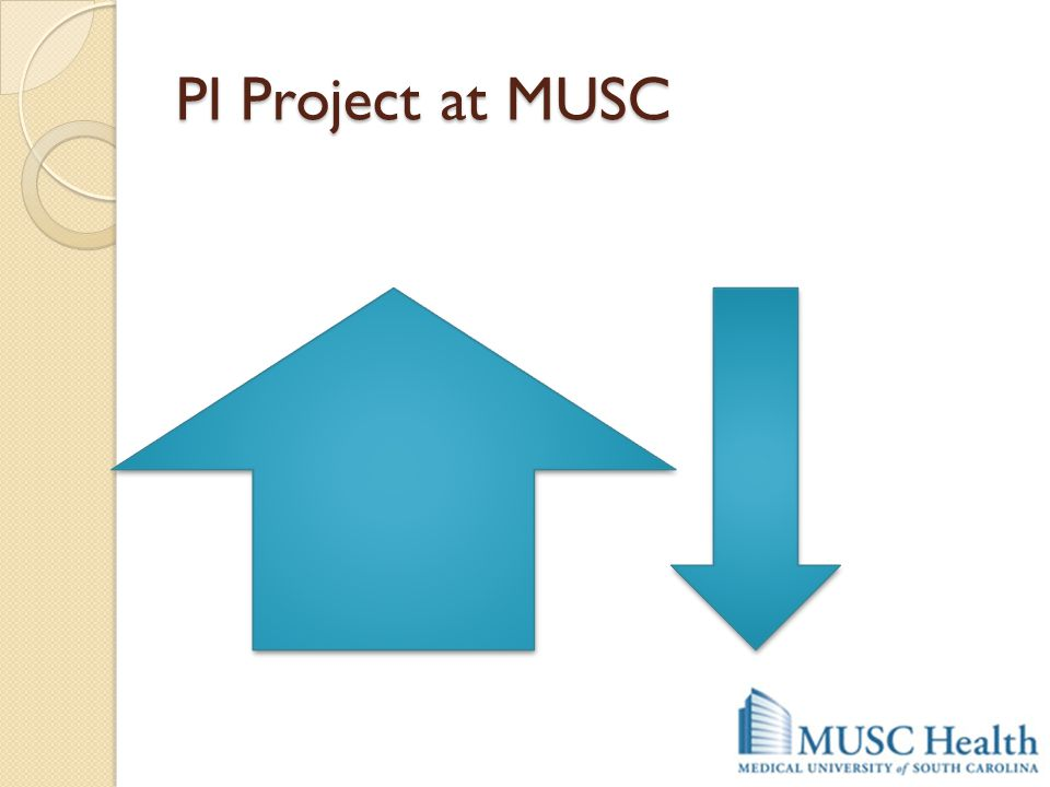 PI Project at MUSC