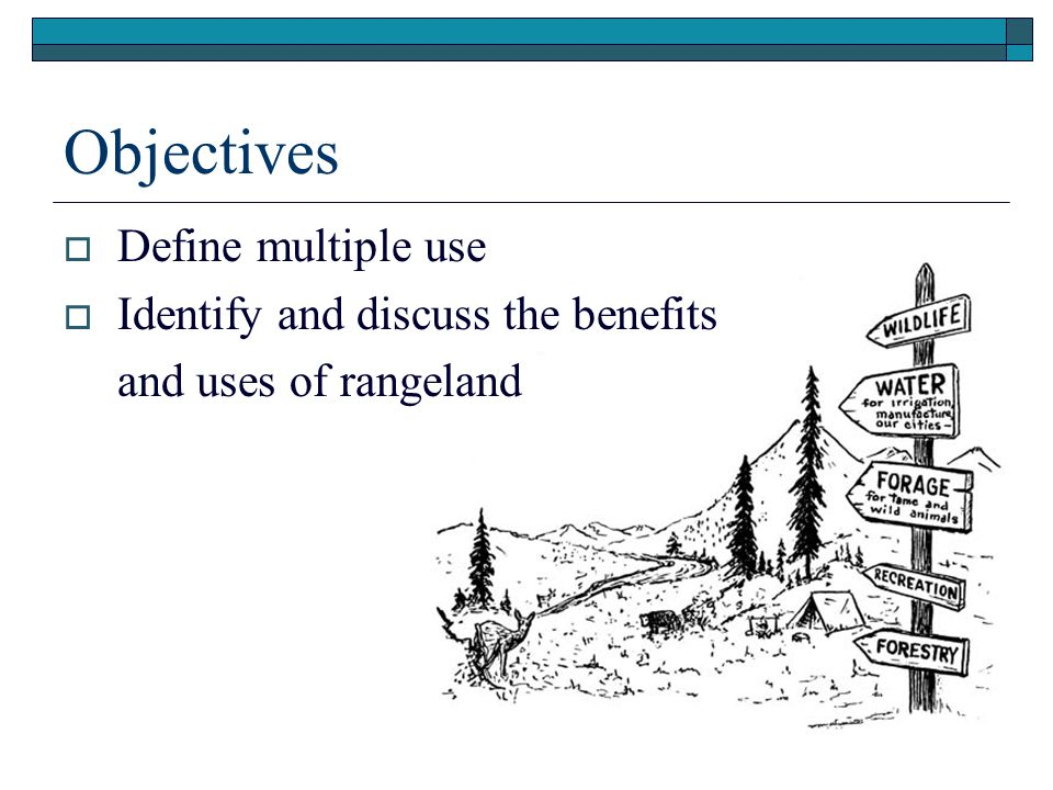 Objectives Define multiple use Identify and discuss the benefits