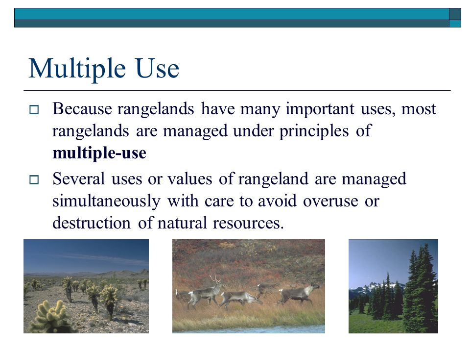 Presentation (.ppt) Multiple Use. Because rangelands have many important uses, most rangelands are managed under principles of multiple-use.