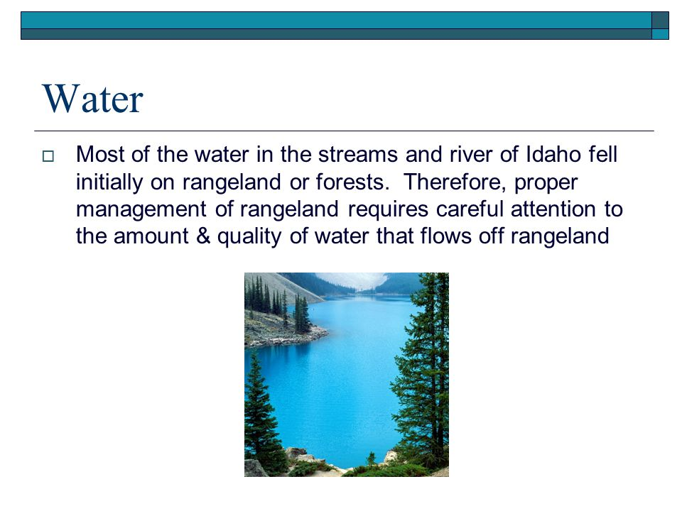 Presentation (.ppt) Water.