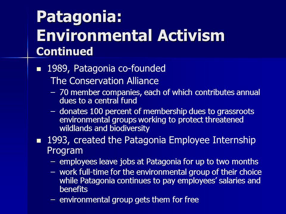 Patagonia: Environmental Activism Continued
