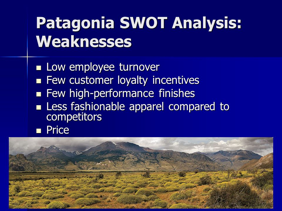 Patagonia SWOT Analysis: Weaknesses