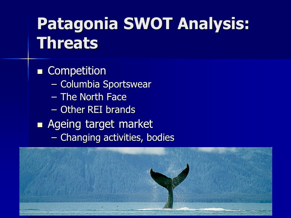 Patagonia SWOT Analysis: Threats