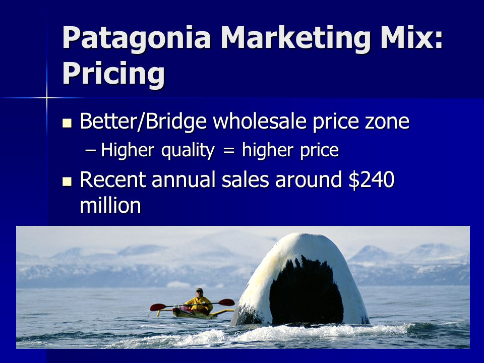 Patagonia Marketing Mix: Pricing