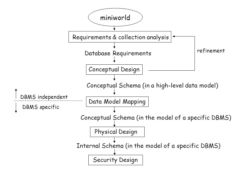 miniworld Requirements & collection analysis Database Requirements