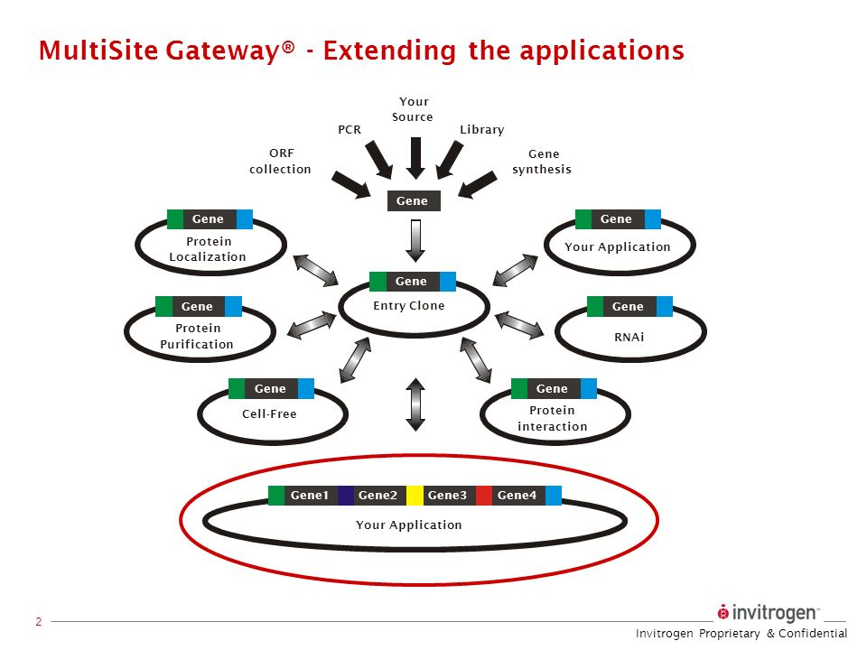 MultiSite Gateway® - Extending the applications