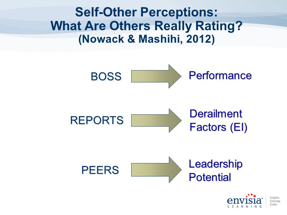 Self-Other Perceptions: What Are Others Really Rating