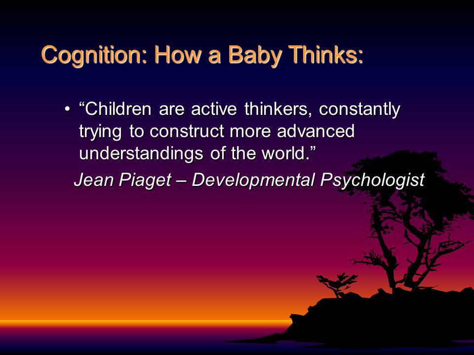 Cognition: How a Baby Thinks: