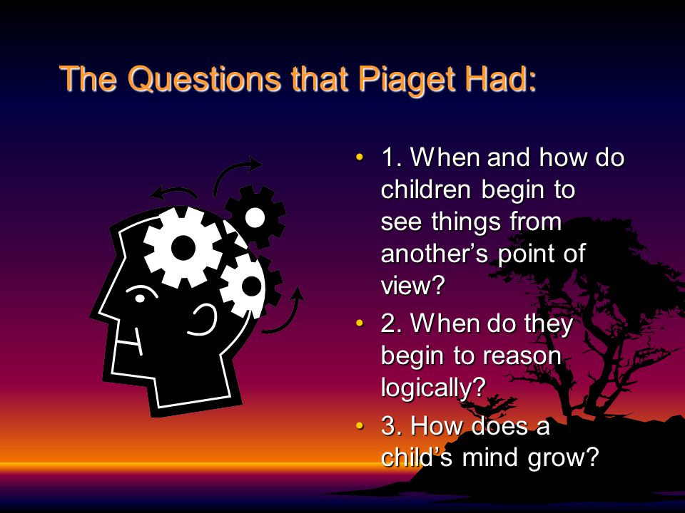 The Questions that Piaget Had: