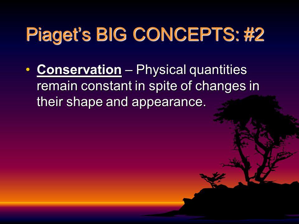 Piaget's BIG CONCEPTS: #2