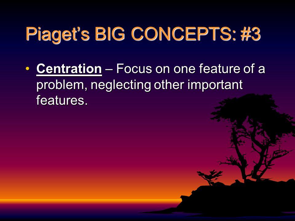 Piaget's BIG CONCEPTS: #3