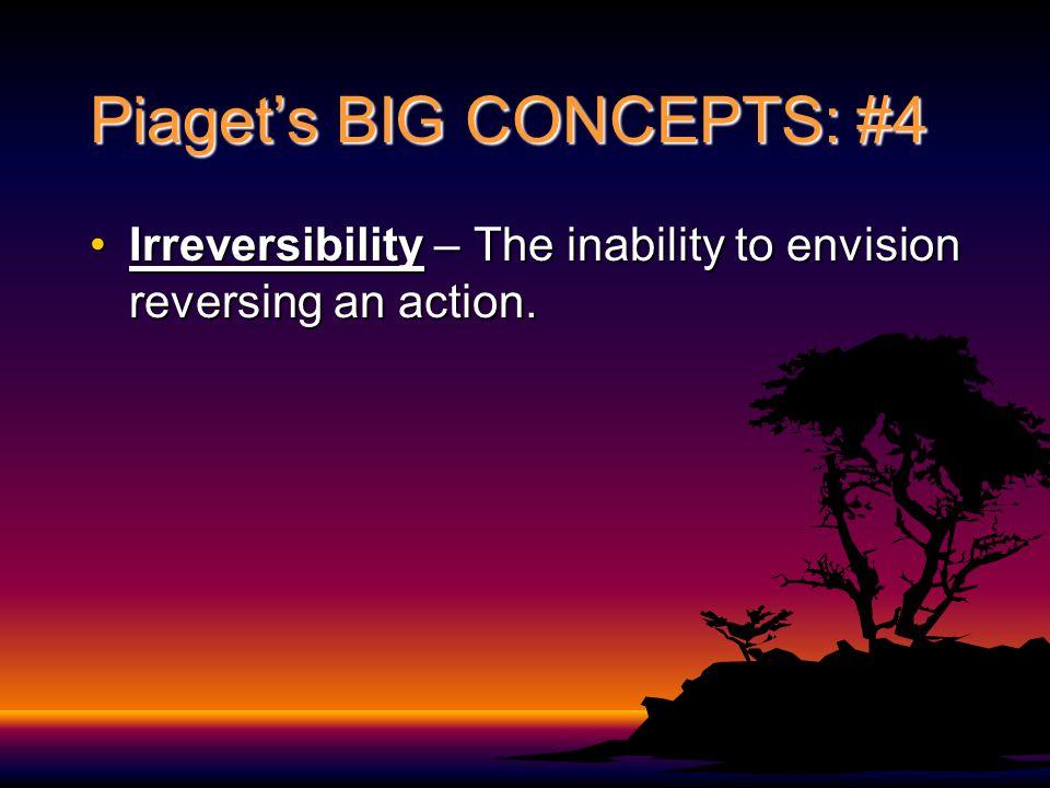 Piaget's BIG CONCEPTS: #4
