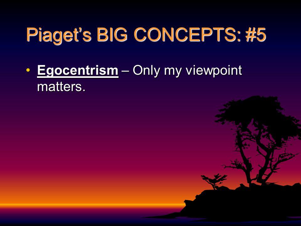 Piaget's BIG CONCEPTS: #5