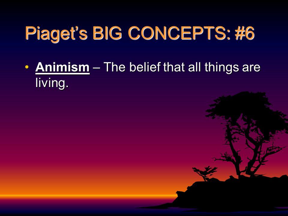 Piaget's BIG CONCEPTS: #6