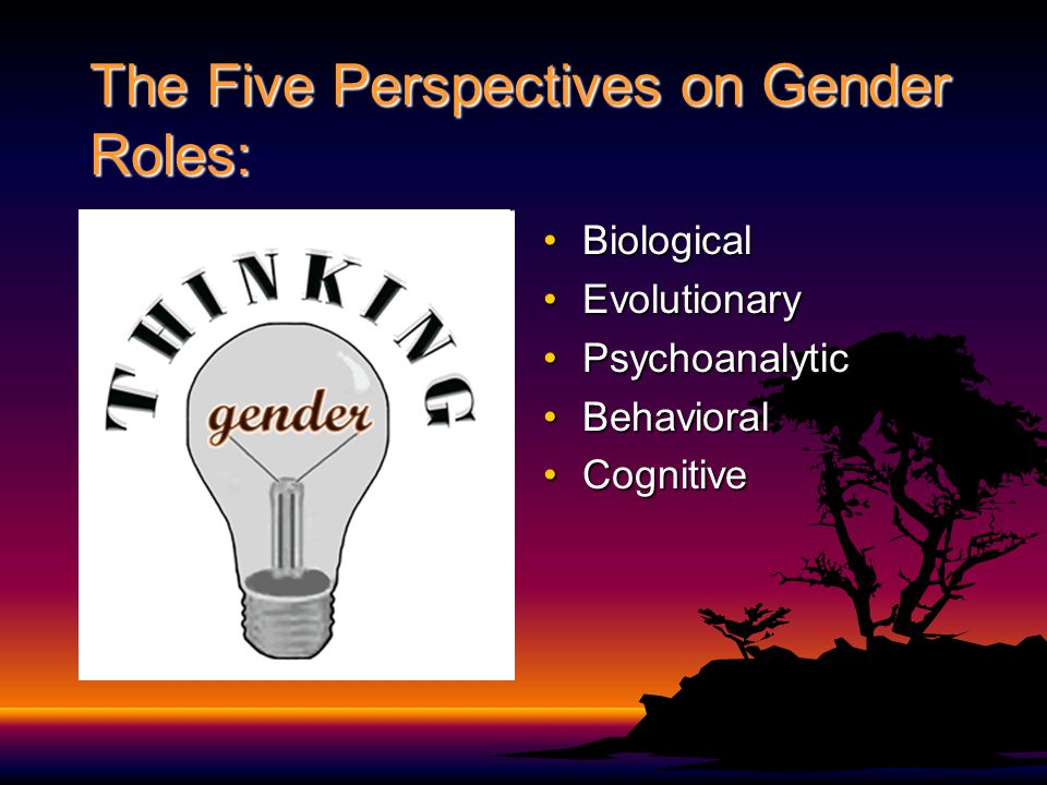 The Five Perspectives on Gender Roles: