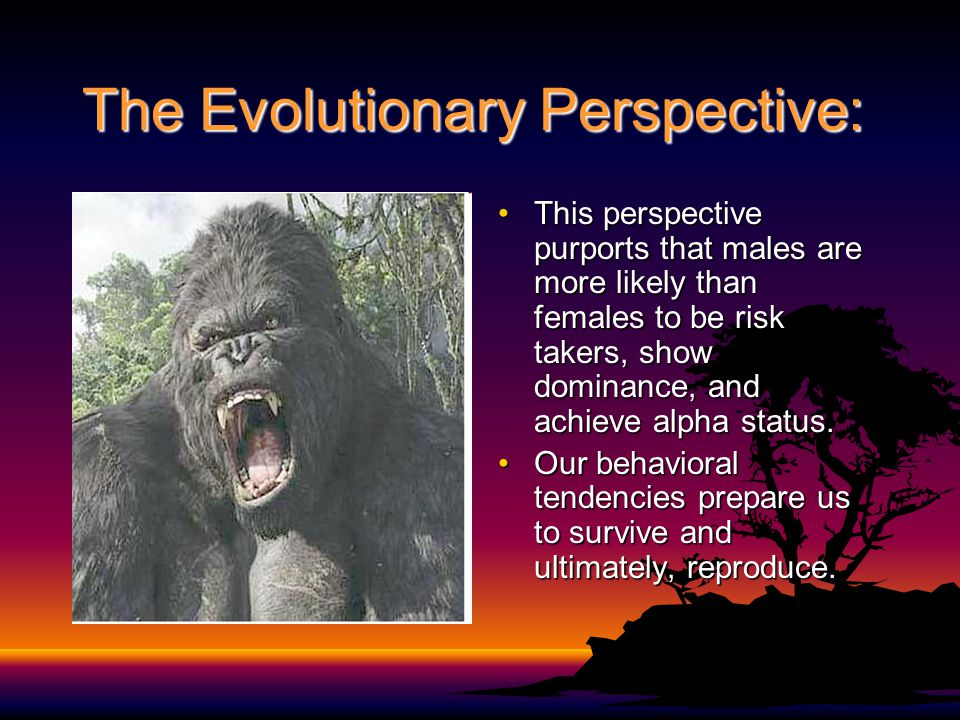 The Evolutionary Perspective: