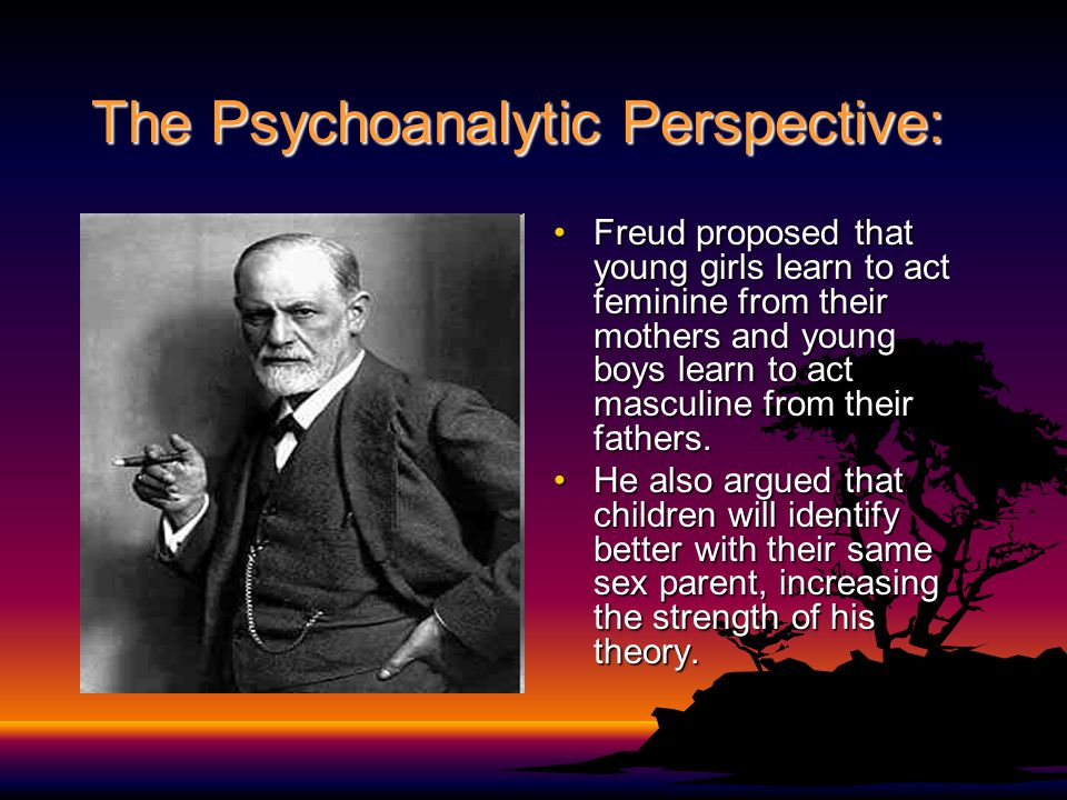 The Psychoanalytic Perspective:
