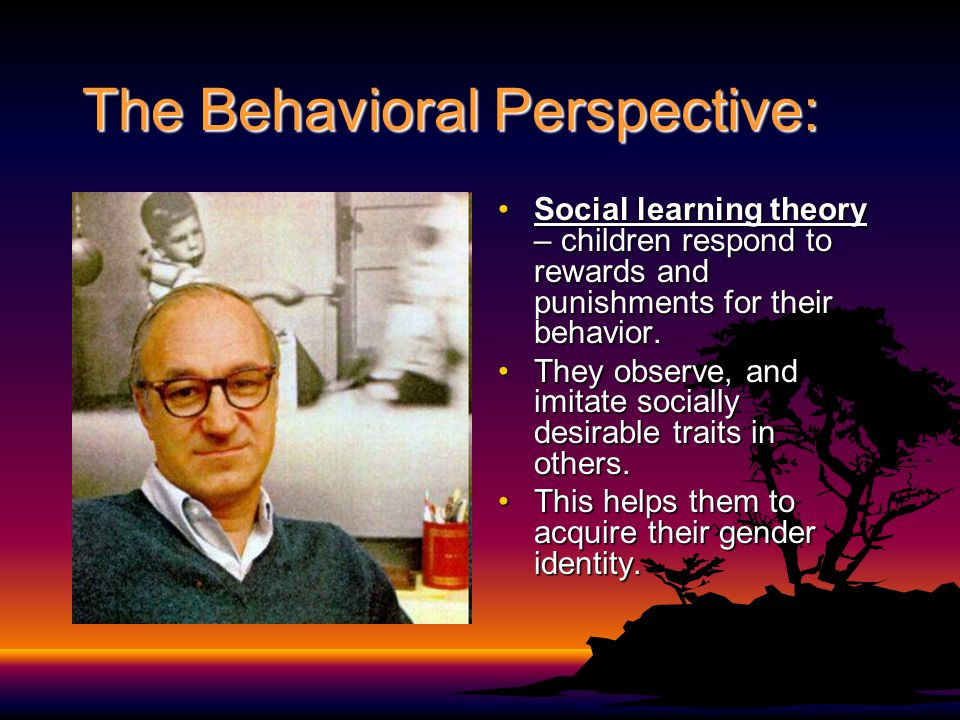 The Behavioral Perspective:
