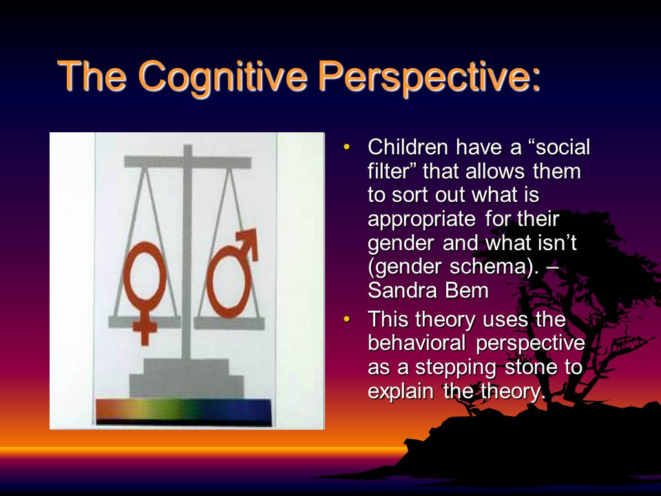 The Cognitive Perspective: