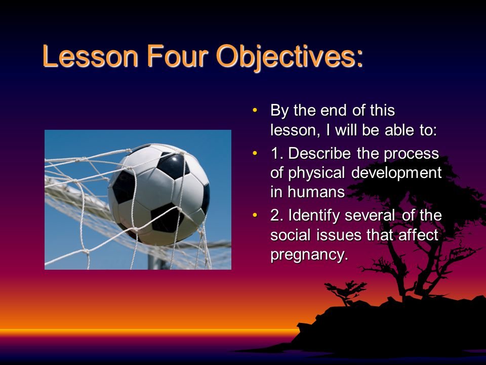 Lesson Four Objectives: