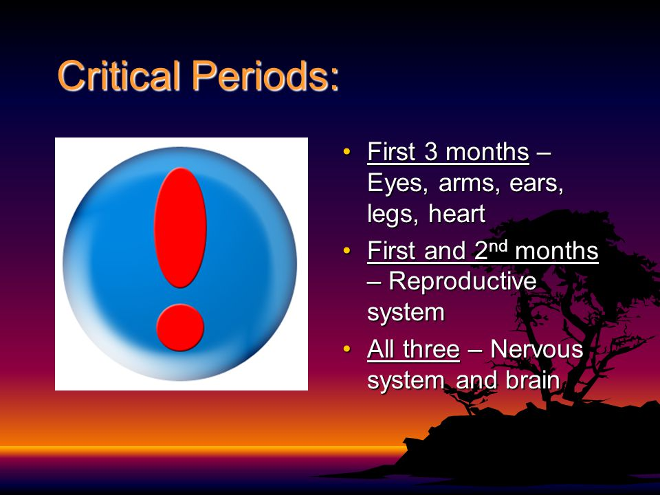 Critical Periods: First 3 months – Eyes, arms, ears, legs, heart