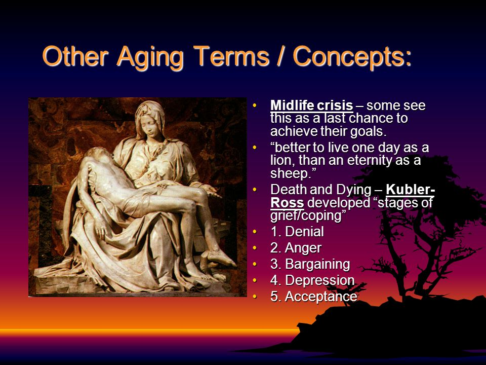 Other Aging Terms / Concepts: