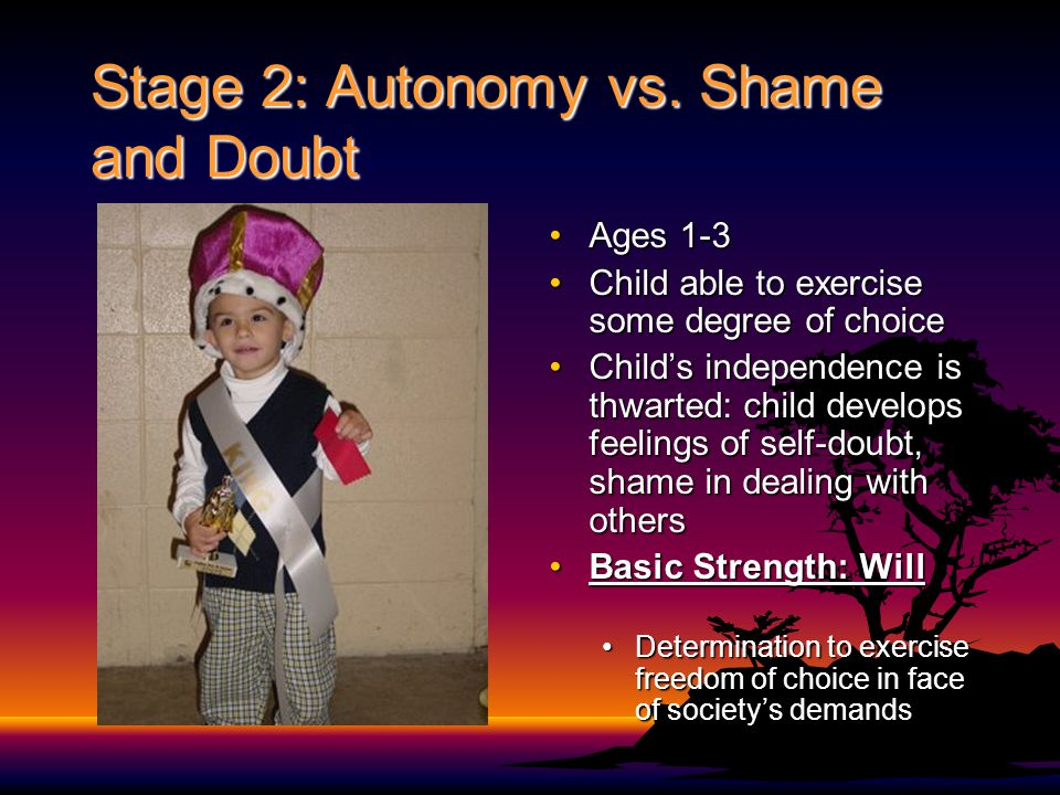 Stage 2: Autonomy vs. Shame and Doubt