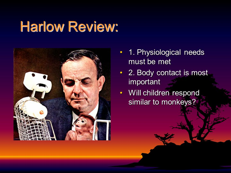 Harlow Review: 1. Physiological needs must be met
