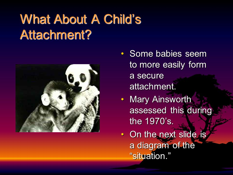 What About A Child's Attachment