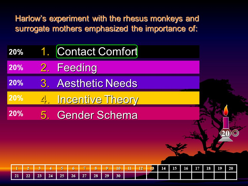 Contact Comfort Feeding Aesthetic Needs Incentive Theory Gender Schema