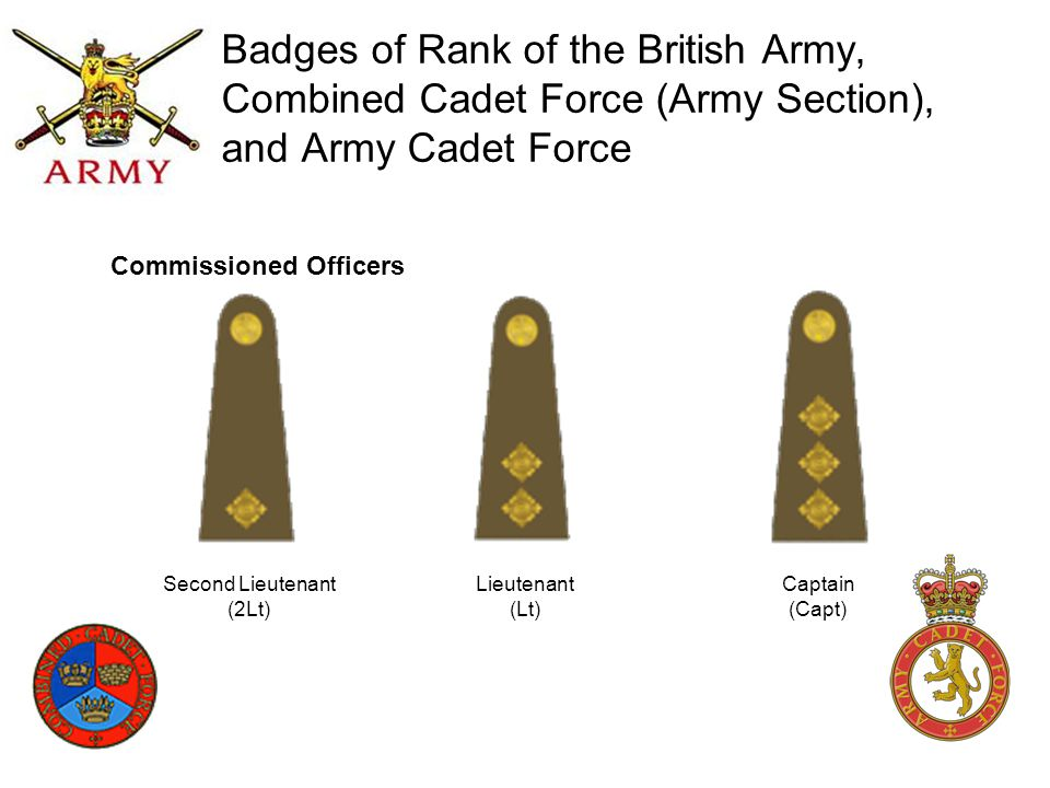 Badges of Rank of the British Army, Combined Cadet Force (Army Section), and Army Cadet Force