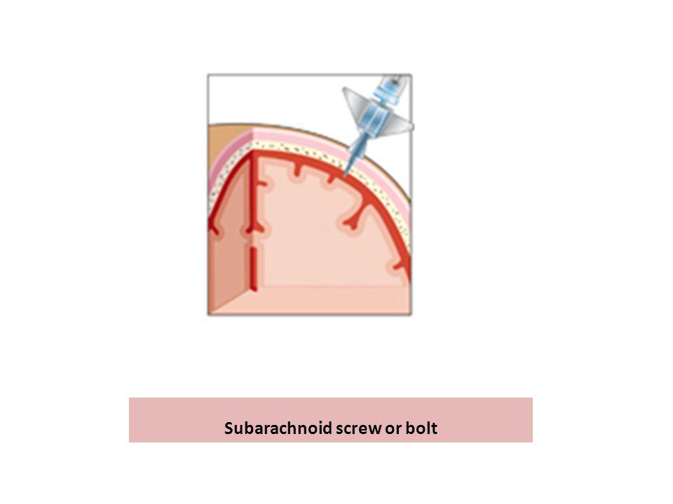 Subarachnoid screw or bolt